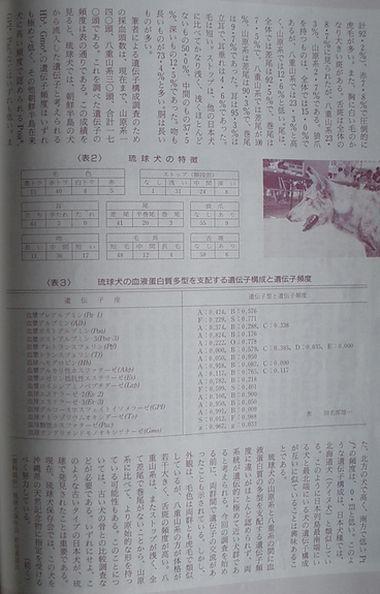 愛犬ジャーナル1994年7月号80頁.jpg
